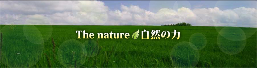 the nature/自然の力
